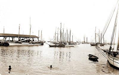 Key West Drawing - Sponge Fleet In Harbor, Key West, Fla, Boats, Harbors by Litz Collection