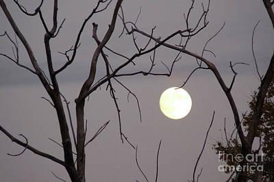 Spooky Moon Print by Deborah Smolinske