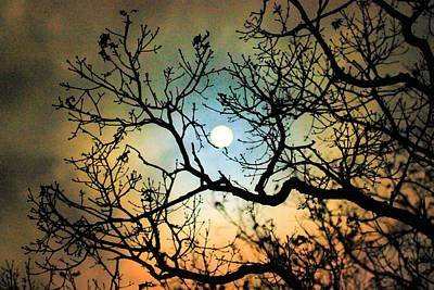 Photograph - Spooky Moon by Mike Flake