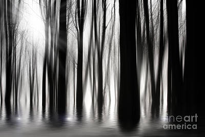 Moonlit Night Photograph - Spooky Woods by Simon Bratt Photography LRPS