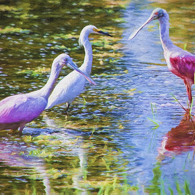 Spoonbill Painting - Spoonbill Flamingos And Great American Egret by David Wagner