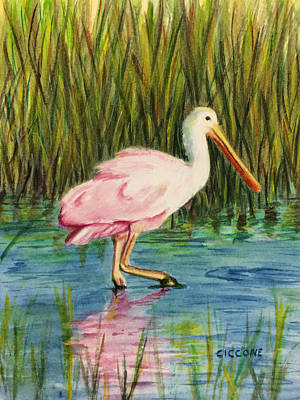Painting - Spoonbill by Jill Ciccone Pike