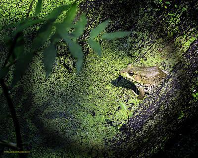 Amphibians Digital Art - Spot Light On The Swamp Frog by LeeAnn McLaneGoetz McLaneGoetzStudioLLCcom