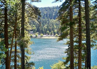 Painting - Forrest Mountain Trees Lake Scenic Photography Lake Gregory San Bernardino California - Ai P. Nilson by Ai P Nilson