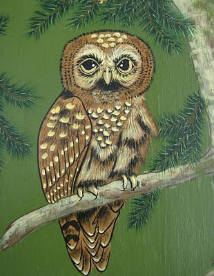 Spotted Owl Art Print