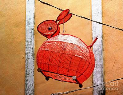 Photograph - Spotted Rabbit Lantern by Ethna Gillespie