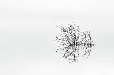 Minimalism Photograph - Sprawling by Benny Pettersson