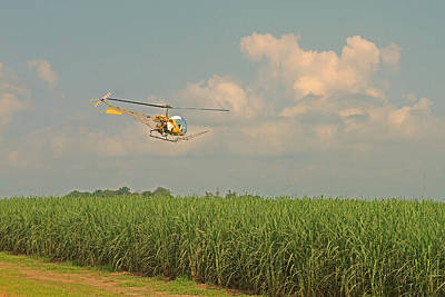 Photograph - Spraying A Sugarcane Field By Helicopter by Ronald Olivier