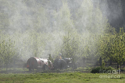 Photograph - Spraying The Orchard by Mike  Dawson