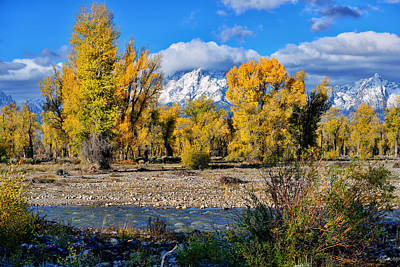 Photograph - Spread Creek Grand Teton National Park by Greg Norrell
