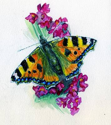 Spreading Wings Of Colour Art Print