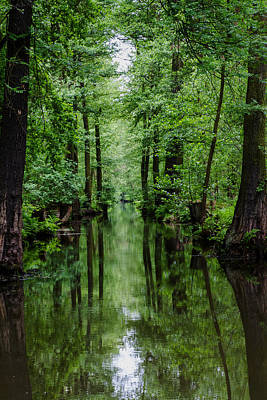 Photograph - Spreewald by Andreas Levi