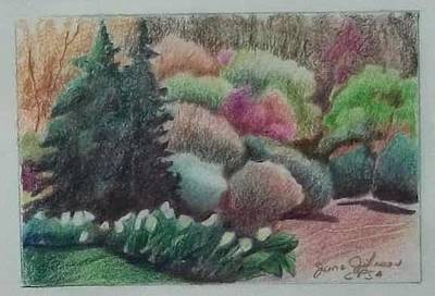 Drawing - Spring Afternoon by Jane Johnson