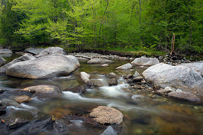 Spring Along The North Fork Art Print by Panoramic Images