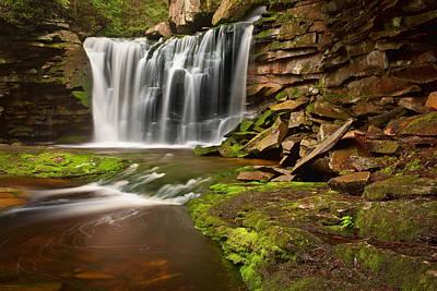 Photograph - Spring At Elakala Falls by Michael Blanchette