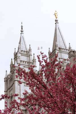 Salt Lake Temple Wall Art - Photograph - Spring At The Temple by Chad Dutson