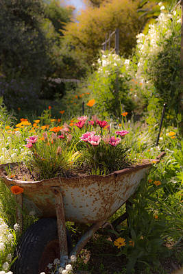 Photograph - Spring Barrow by Michael Hope