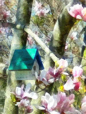 Photograph - Spring - Birdhouse In Magnolia by Susan Savad