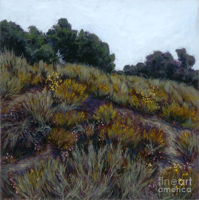 Painting - Spring Bloom - Drum Canyon by Betsee  Talavera