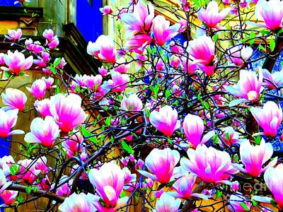 Spring Blossoms Art Print by Ed Weidman