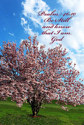 Photograph - Spring Blossoms With Scripture by Lorna R Mills DBA  Lorna Rogers Photography