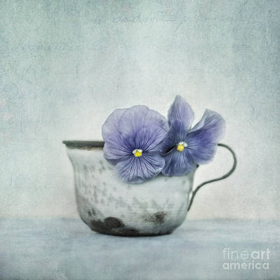 Enamel Photograph - Spring Blues With A Hint Of Yellow by Priska Wettstein