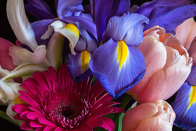 Photograph - Spring Bouquet by Julie Andel