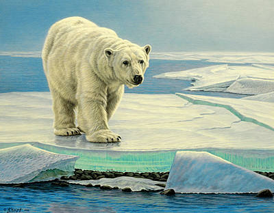 Polar Bear Wall Art - Painting - Spring Break by Paul Krapf