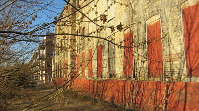 Photograph - Spring Buds And Urban Decay 3 by Anita Burgermeister