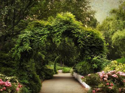 Garden Flowers Photograph - Spring Canopy by Jessica Jenney