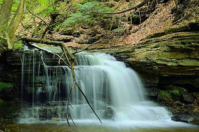 Photograph - Spring Cascade #1 - Loyalsock State Forest by Joel E Blyler