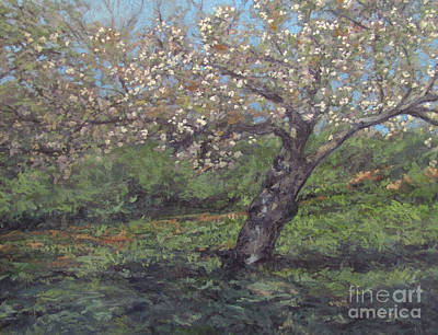 Painting - Spring Cherry Blossoms by Gregory Arnett