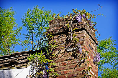 Photograph - Spring Chimney by Linda Brown