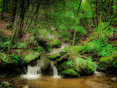 Photograph - Spring Creek by Dave Hall