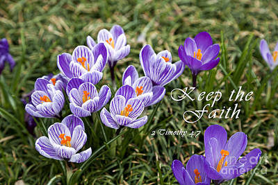 Photograph - Spring Crocus With Scripture by Jill Lang