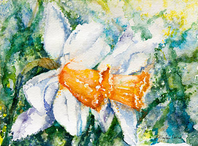 Daffodils Painting - Spring Daffodiles by Patricia Allingham Carlson