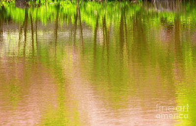 Photograph - Spring Day Impression by Charline Xia