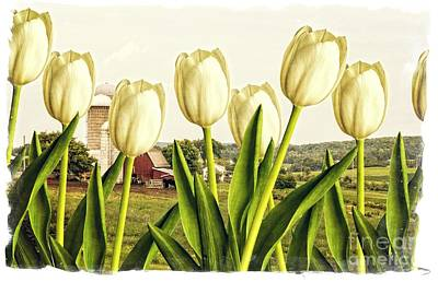 Spring Down On The Farm Art Print by Edward Fielding