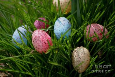 Photograph - Spring Eggs by Living Color Photography Lorraine Lynch