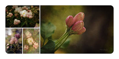 Spring Emerging Collage Art Print by Mary Machare