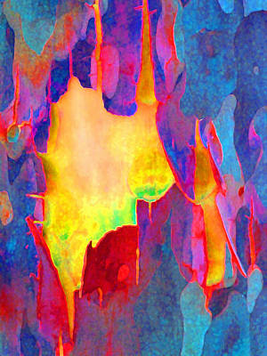 Photograph - Spring Eucalypt Abstract 17 by Margaret Saheed