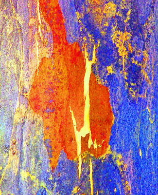 Photograph - Spring Eucalypt Abstract 5 by Margaret Saheed