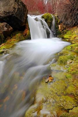 Photograph - Spring Falls by David Andersen