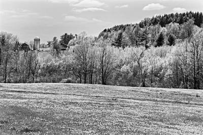 Maine Meadow Photograph - Spring Farm Landscape With Dandelions In Maine by Keith Webber Jr