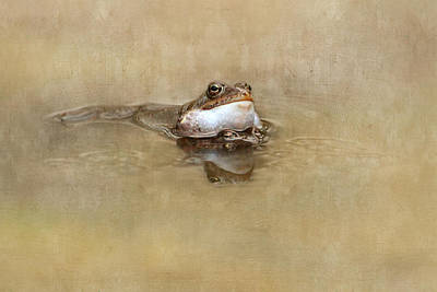 Amphibians Mixed Media - Spring Feelings by Heike Hultsch