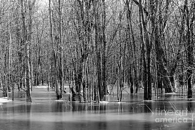 Spring Flooding Art Print