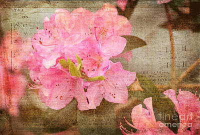 Spring Floral Art Print by Arlene Carmel