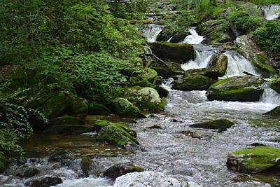 Photograph - Spring Flow - Mountain Stream Tumbling Down by RD Erickson