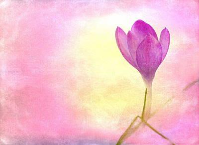 Flower Still Life Mixed Media - Spring Flower by Heike Hultsch
