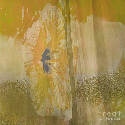 Spring Flower Unveiling Print by Beverly Guilliams